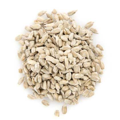 Sunflower Seeds (Insecticide Free)