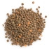 Whole Red Lentils