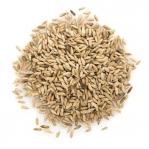Organic Rye Grain