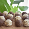 Chocolate and Vanilla Hemp Bliss Balls