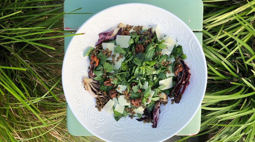 French Puy Lentil & Radicchio Salad